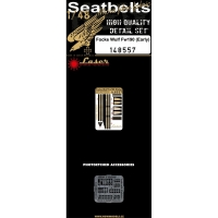 HGW 148557 1/48 Focke Wulf Fw 190 early seatbelts