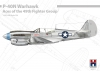 Hobby 2000 48001 1/48 72 P-40N Warhawk Aces of The 49th Fighter Group