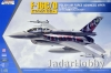 Kinetic K48076 1/48 F-16C/D Block 52 Polish Air Force